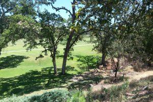 Rossmoor coop and condo golf homes